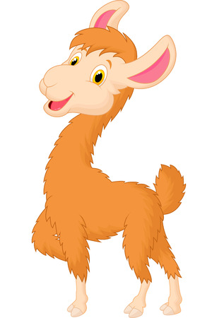 Happy llama cartoon