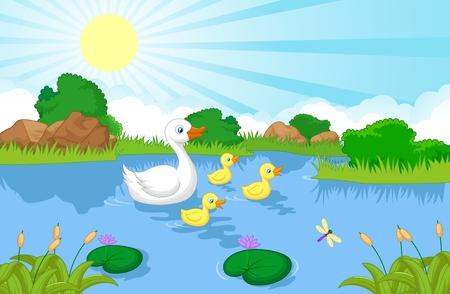 pato caricatura: Natación de la historieta de la familia del pato Vectores