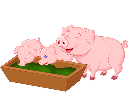 Happy farm pig family cartoon Illustration