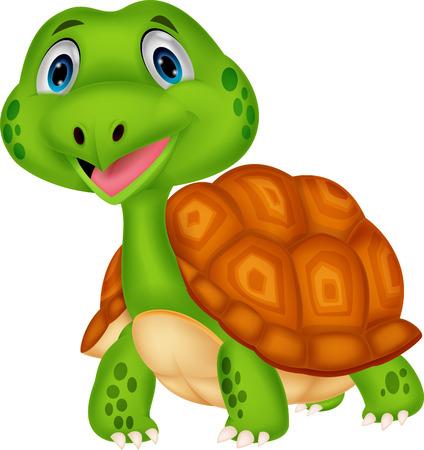 귀여운 거북이 만화 스톡 콘텐츠 - 27649533