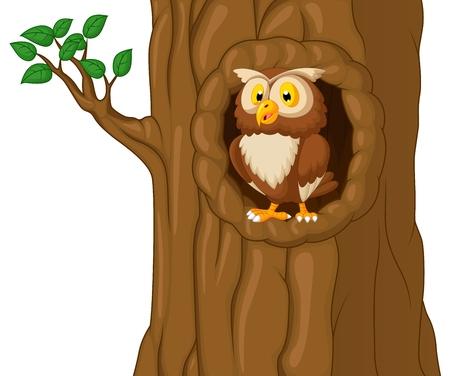 nocturnal: Cartoon Owl In Tree  Illustration