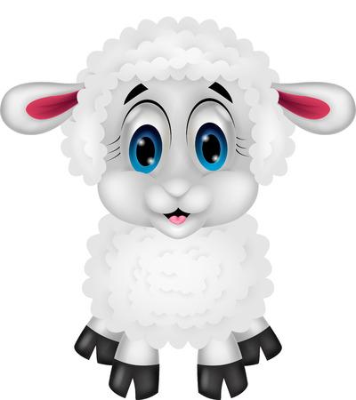ovejas bebes: Dibujos animados lindo de las ovejas Vectores