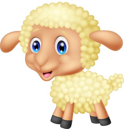 ewe: Cute lamb cartoon