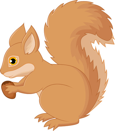 red squirrel: Squirrel cartoon holding nut