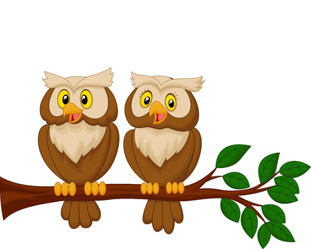 Cute owl couple cartoon Vector