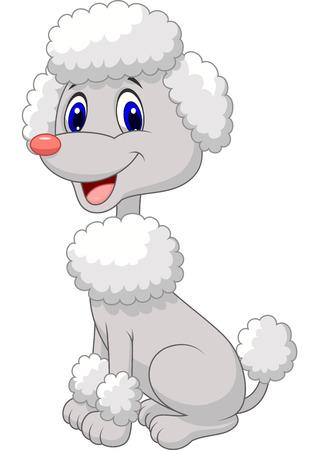 Cute poodle cartoon Vector