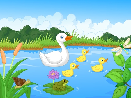 Duck family cartoon swimming Illustration