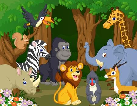 animales de la selva: Caricatura de animal salvaje Vectores