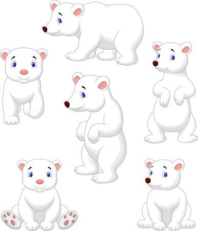Cute polar bear cartoon collection  Vector
