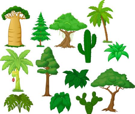 Various tree cartoon collection  Vector
