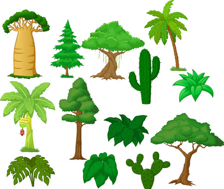 baobab: Various tree cartoon collection  Illustration