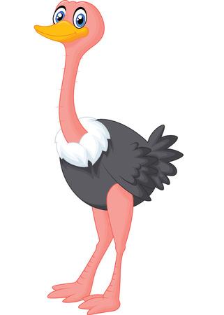 avestruz: Avestruz linda de dibujos animados