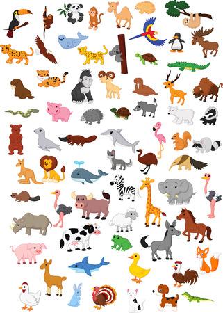 serpiente caricatura: Conjunto de la historieta de los animales grandes Vectores