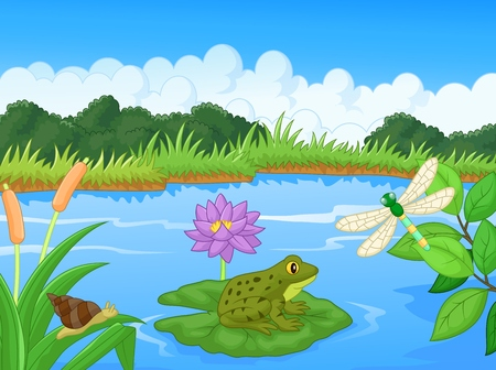 pond water: Cartoon a frog at the river