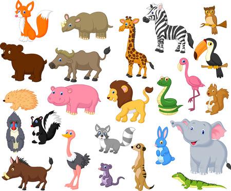 zorrillo: Colección de dibujos animados de animales silvestres Vectores