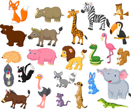 moufette: Collection Wild animal cartoon