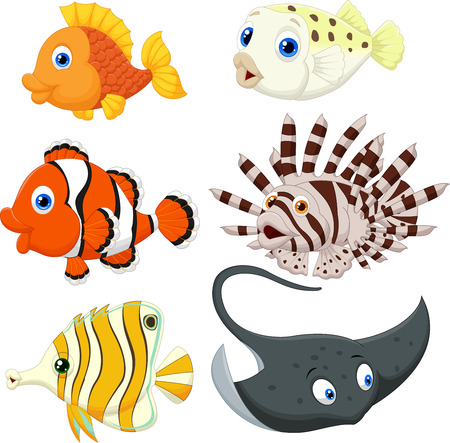 Tropische Fische Cartoon Standard-Bild - 30337546