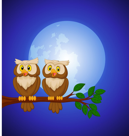 Couple owl cartoon at night Vector