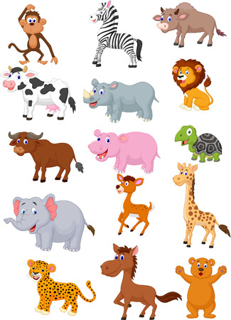 jungle animal: Colecci�n de dibujos animados de animales silvestres Vectores