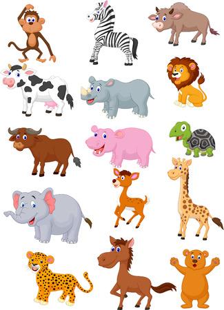 zvířata: Kolekce cartoon Divoké zvíře