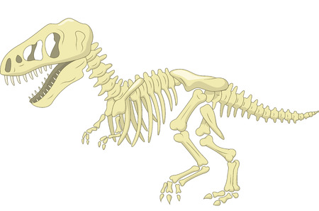 paleontology: Dinosaur skeleton Illustration