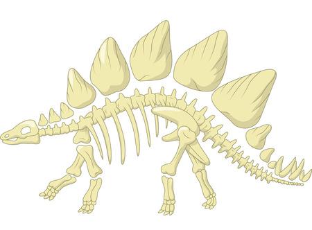 Stegosaurus skelet Vector Illustratie