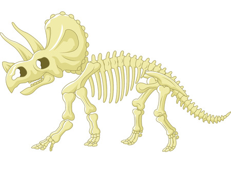 Triceratops skelet Stock Illustratie