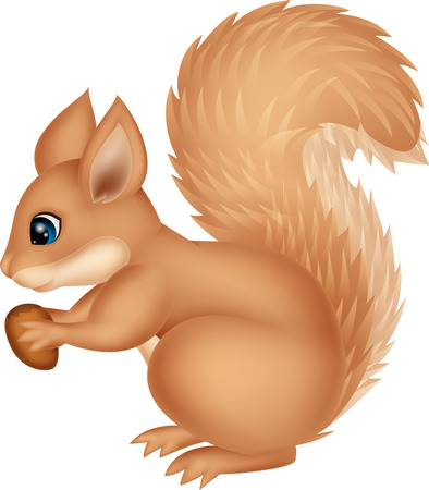 Squirrel cartoon holding nut Vector
