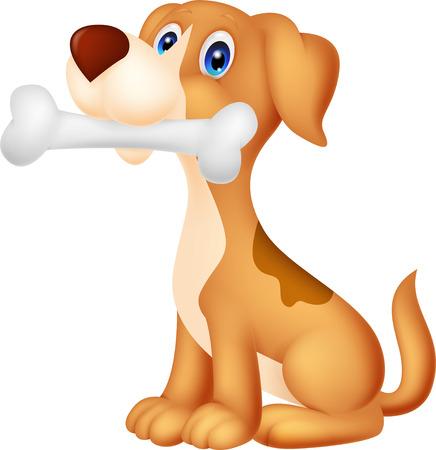 hueso de perro: Perro lindo con hueso