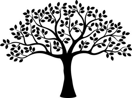 arbol genealógico: Árbol de la silueta Vectores