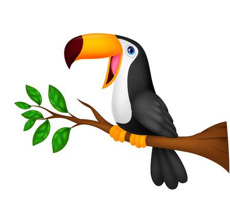 black beak: Cute toucan bird cartoon