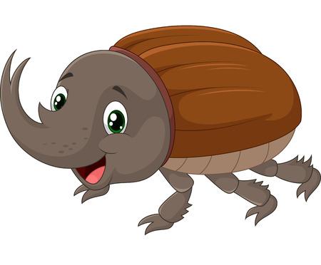 invertebrates: Rhinoceros beetle