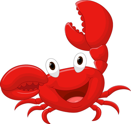 animal eye: Cute crab cartoon Illustration