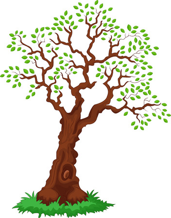 leafage: Cartoon Tree with green leafage Illustration