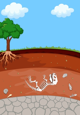 Soil Layers with dinosaur fossil cartoon