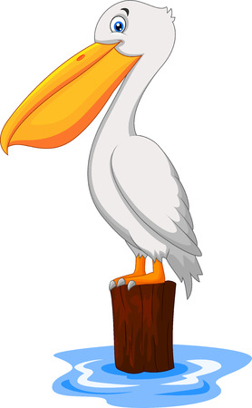 pelican: Cartoon Pelican in the bay Illustration