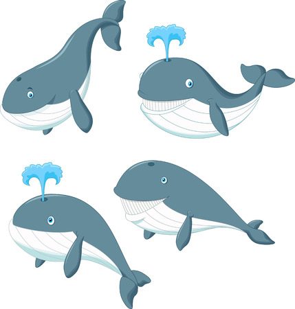gush: Cartoon whale Illustration