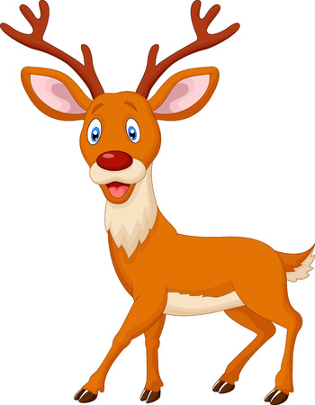 white tail deer: Cartoon deer Illustration