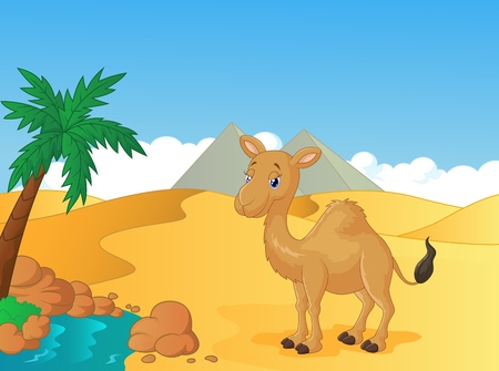 Cartoon camel with desert background Illustration