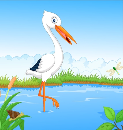 White stork cartoon searching food Vector