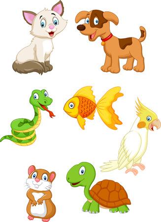 kitten cartoon: Cartoon pet Illustration