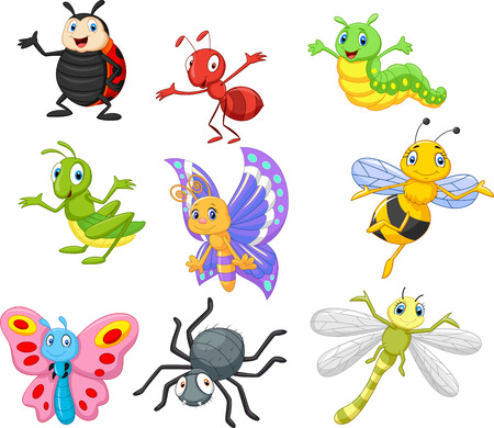 animal cartoon: Cartoon insect Illustration