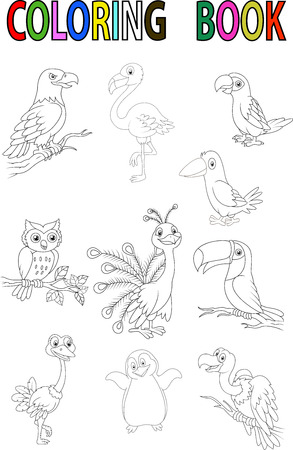 Cartoon bird coloring book Vector