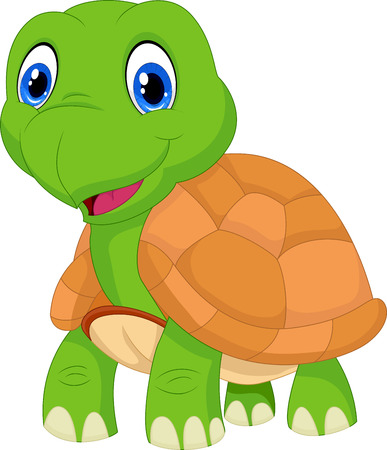 green turtle: Cute cartoon tartaruga verde