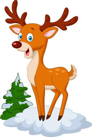 white tail deer: Cute cartoon deer Illustration