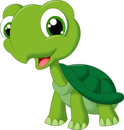 schildkröte: Nette Karikaturschildkröte