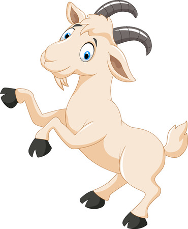 domestic goat: Cartoon goat character Illustration