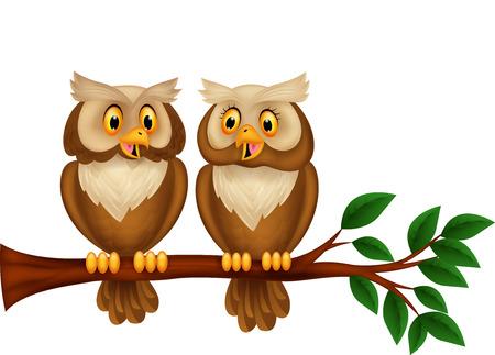 owl cartoon: Cartoon couple owl on a branch Illustration