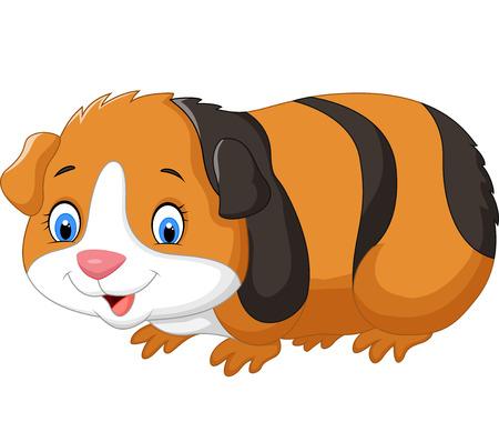 cerdo caricatura: Cartoon lindo conejillo de indias
