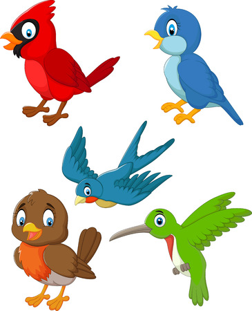 green cute: Cartoon birds collection set